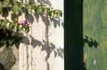 Cinque Terre, Italy #6