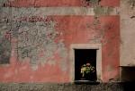 Cinque Terre, Italy #2